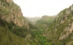 qadicha-world-heritage-2